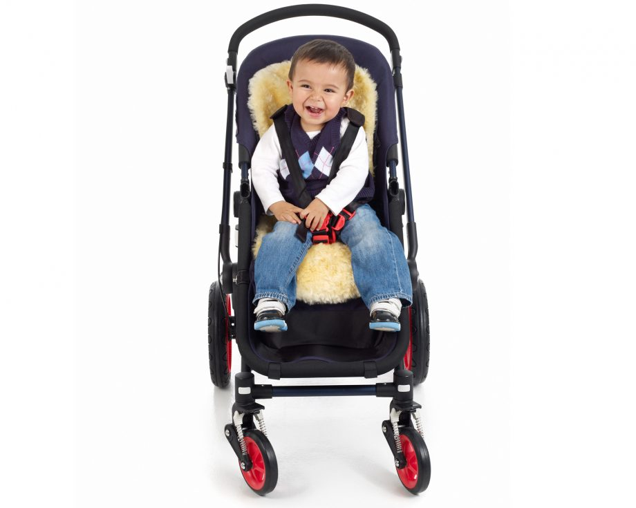 The Easy Liner - Fareskind Baby Liner in Stroller with child